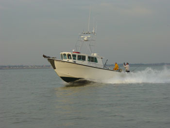 Sophie Lea II - Best Essex Charter Fishing Boat?